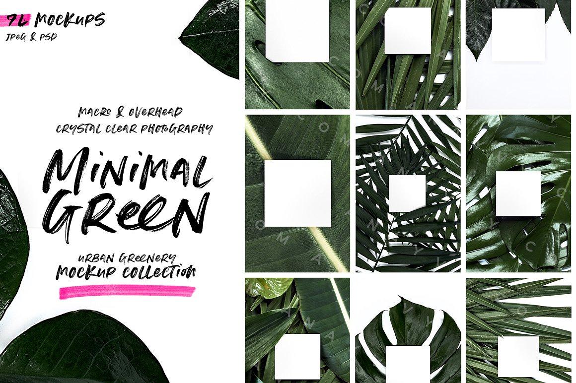 01-urban-jungle-greenery-minimalistic-mockup-poster-din-business-card-presentation-template-