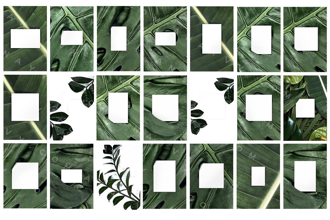 03-urban-jungle-greenery-minimalistic-mockup-poster-din-business-card-presentation-template-