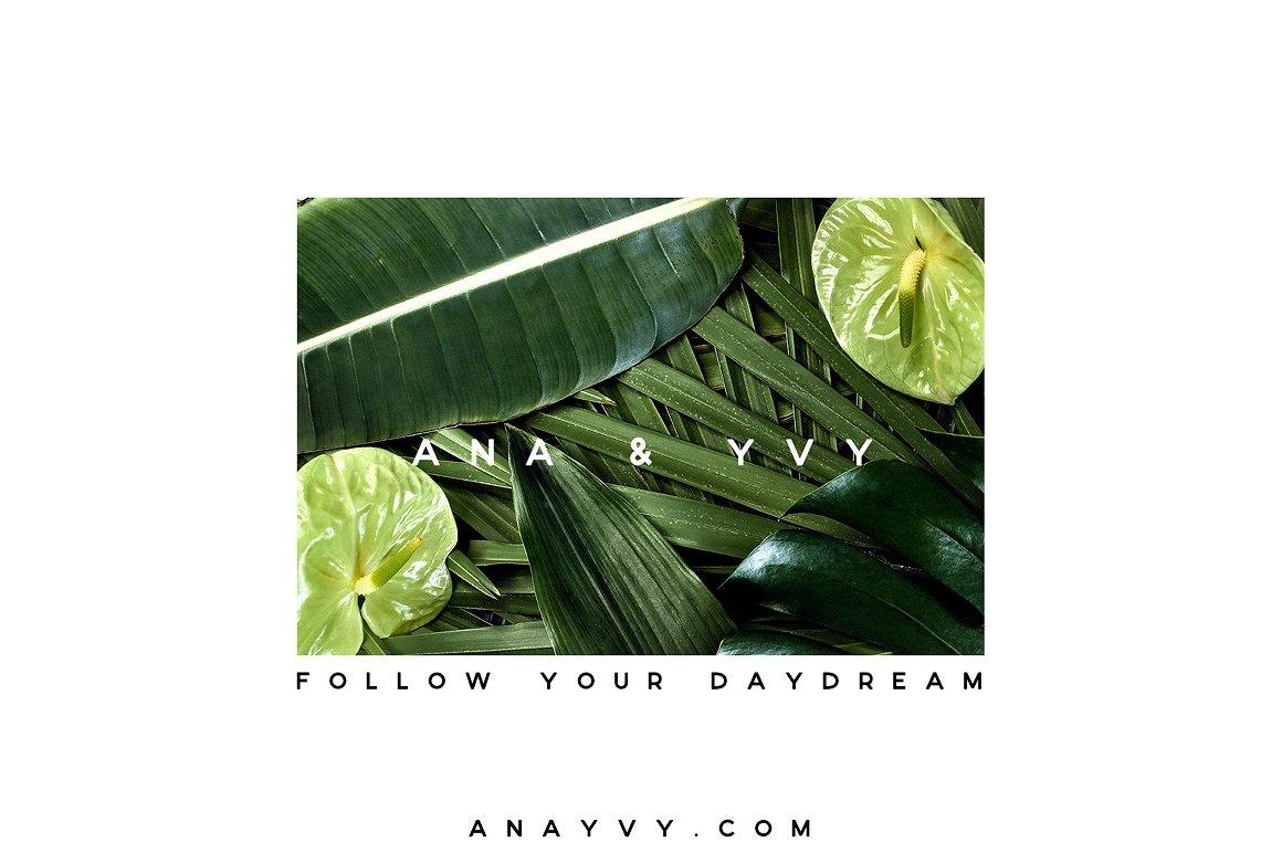 06-urban-jungle-greenery-minimalistic-mockup-poster-din-business-card-presentation-template-