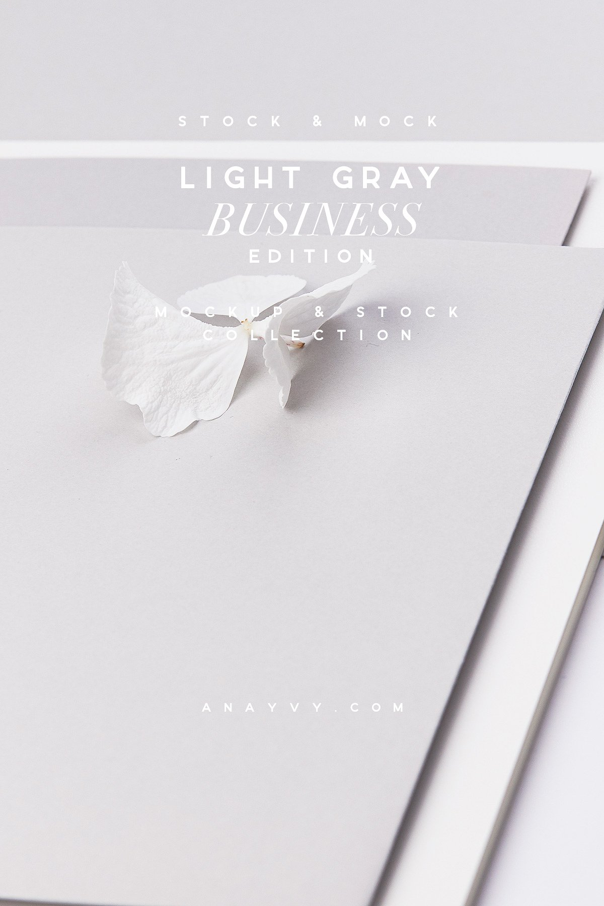 00a-creative-stock-image-mockup-collection-social-media-fashion-blogger-light-grey-sophisticated-white-silver-